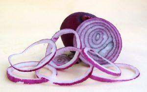 onion-899095_640