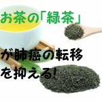 お茶に含まれる成分が肺癌の転移を抑える!最新研究で判明!